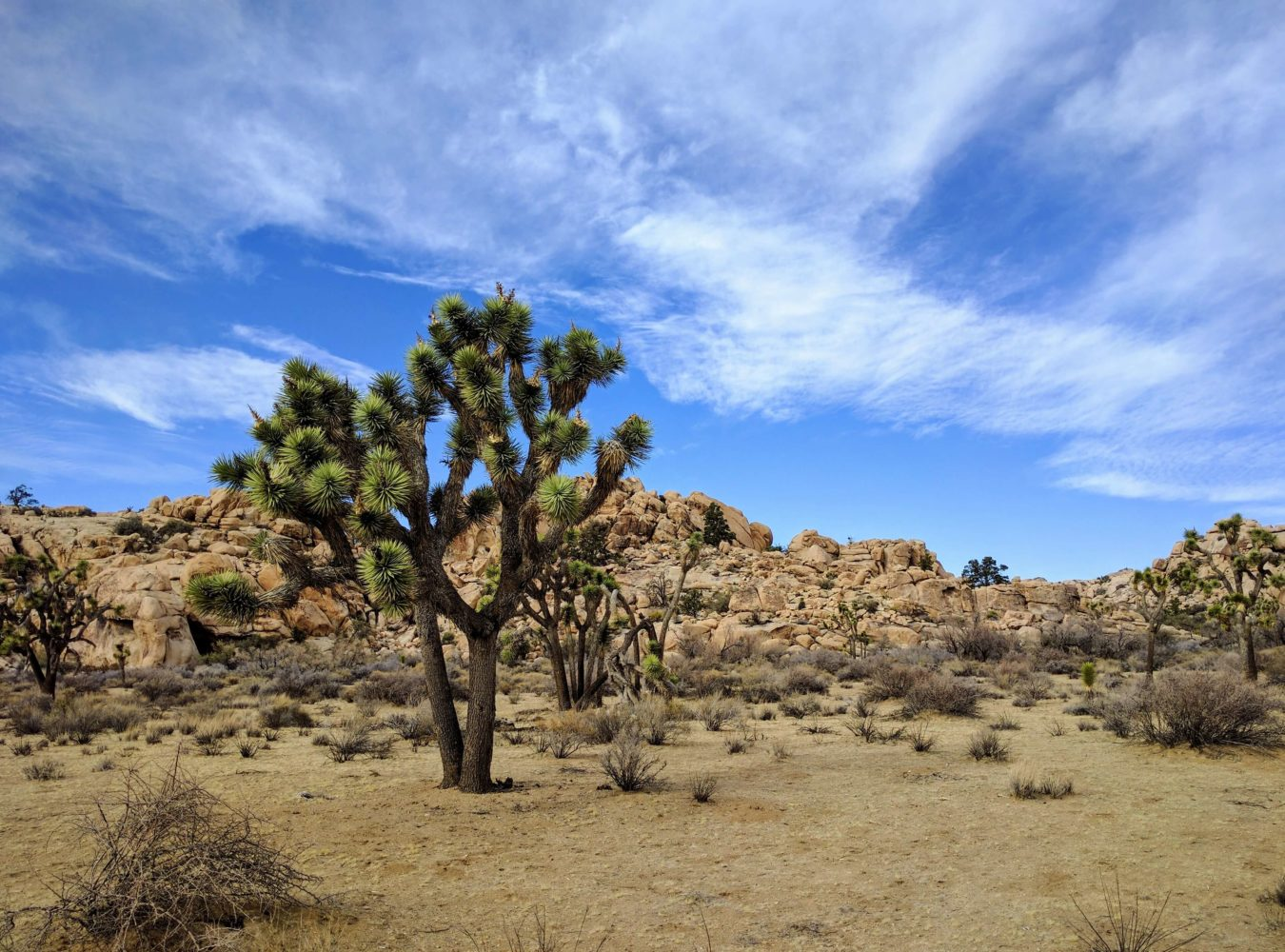 Sell A Business Buy A Business Palm Springs Palm Desert